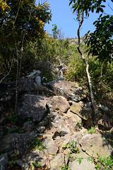 DSC_8529 (sch0705) Tags: hk hiking kowloonpeak standingeagleridge
