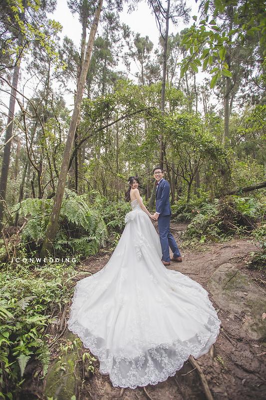 花卉實驗中心,黑森林,自助婚紗,拍婚紗,婚紗攝影