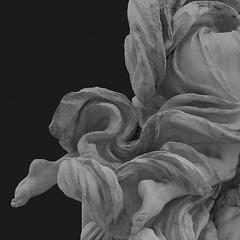 feather light (caeciliametella) Tags: rome roma victoremanuelmonument altaredellapatria vittorioemanueleii statue statua white bianco feet piedi abstract astratto bn bw black bianconero square 11 piazzavenezia monumentonazionale