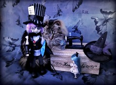 A new Hat for Little Alice (pianocats16, miau...) Tags: mad hatter alice wonderland living dead doll ldd little blythe cheshire cat figure kitty cute toy sewing machine