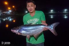 DSC_0950 (inkid) Tags: simpangampat pulaupinang malaysia my henry fishing pond fish tambun kolam pancing mekong bukit patin freshwater sony z5