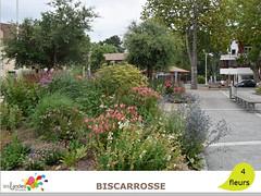 biscarrosse1 (Tourisme Landes) Tags: landes fleurs vvf