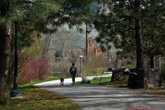 Spring walk.... (ltodd1) Tags: clark fork natural park