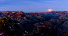 Moonshadow (garshna) Tags: grandcanyonnationalpark moon fullmoon shadows vishnutemple sunset moonrise