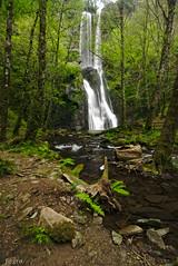 Seimeira de Vilagocende 3 (f@gra) Tags: fervenza cascada waterfall landscape paisaje sony sigma lugo rio river water fonsagrada seimeira vilagocende forest bosque trees arboles naturaleza nature