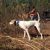 Georgia Mule Drawn Quail Hunt 34