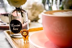 Cuppocino (akira.nick66) Tags: bear blackcoffee break brown cafe caffeine coffee coffeebreak coffeecup copyspace cup cuppocinno cuppocino defocused dishware drink foam food foodanddrink heat hotdrink liquid mug nobody photography pink refreshment scented selectivefocus seoul southkorea