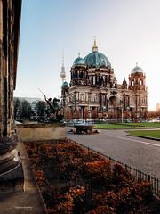 Berliner Lustgarten (Thomas Bechtle Fotografie) Tags: altesmuseum berlin berlinerdom d800 fernsehturm lustgarten nikon stadt cityscape urban city citycape museumsinsel