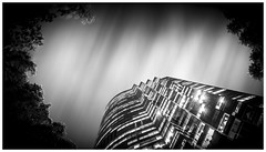 Urban jungle (Jaka Pirš Hanžič) Tags: brisbane city queensland qld australia long exposure black white bw bright dark night tree building architecture lights clouds cloudy movement monochrome motion cityscape urban jungle vignette framing