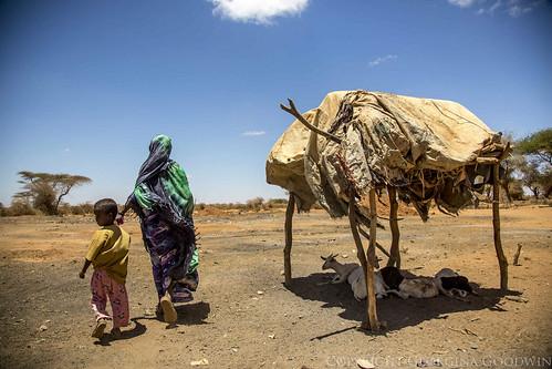 Somaliland_Mar17_0452