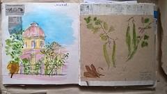 Pondicherry. Carnet. Page du lindi 20 février 2017. (couleur.indigo) Tags: carnet croquis india inde watercolor aquarelle architecture pondicherry pondy