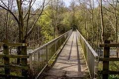 2017 - 04 - 03 - EOS 600D - A55 Expressway - Footbridge - North Wales - 000 (s wainwright) Tags: 2017 april theoldwarren buckley flintshire a55 canon600d eos600d