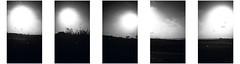 N-332 (Pascal Heymans) Tags: espagne españa fotokunst n332 spain spanien spanje strase baumeln blackandwhite bw carretera commuting enroute fairelanavette iphone onthego onderweg pendelen photo photography porelcamino reis reizen road route rue straat street viajar weg zw zwartwit torrevieja alicante es pascalheymans