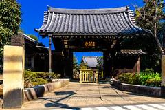 Kyōōuji Temple Main Gate : 経王寺山門 (Dakiny) Tags: 2017 spring march japan tokyo arakawa arakawaward nippori nishinipporioutdoor landscape architecture building temple color sky blue nikon d7000 sigma 1770mm f284 dc macro os hsm sigma1770mmf284dcmacrooshsm nikonclubit