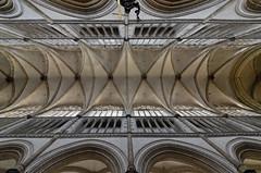 Saint-Omer (Pas-de-Calais) - Cathédrale Notre-Dame - Voûtes de la nef (Morio60) Tags: saintomer pasdecalais 62 cathédrale notredame