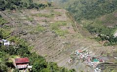The Rice Terraces Of Batad (Alan1954) Tags: batad luzon philppines rice terraces unesco riceterraces holiday 2015