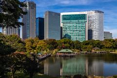 IMG_2497 (Evgeny Gorodetskiy) Tags: sunshine autumn garden landscape building travel cityscape outdoor weekend city park skyscrapper himarikiyu japan tokyo minatoku tōkyōto япония jp
