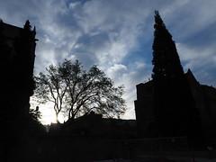 P4220156 (starimmak) Tags: uw clouds sun