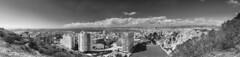 Un jour de Printemps-https://www.xaierhuard.com/ (Artiste/Photo) Tags: d800 france frensh nikon arbre nature sky tree view vue paca marseille ville city nb alpesdehautprovence landscape monochrome