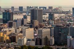 IMG_2616 (Evgeny Gorodetskiy) Tags: birdseye autumn city overlook skyscrapper tokyo japan travel minatoku tōkyōto япония jp