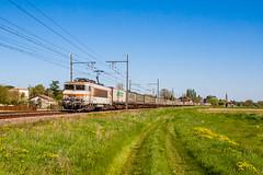 09 avril 2017  BB 7426  Train 42316 Sibelin -> Bordeaux  Lamothe-Landerron (33) (Anthony Q) Tags: 09 avril 2017 bb 7426 train 42316 sibelin bordeaux lamothelanderron 33 ferroviaire fret sncf bb7200 aquitaine gironde gare bb7426