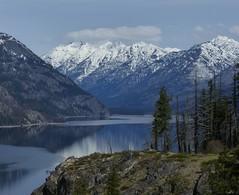 Lake Chelan (delphinusorca) Tags: stehekin lakechelan chelanlakeshoretrail fz200