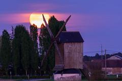 lune rose - Pink moon - rosa Mond (oudjat45) Tags: lunerosepinkmoonrosamond moulin ciel mühle mill sky himmel unlimitedphotos bleu blue