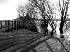 The Crannog Centre - Llangorse Lake. (ali j5) Tags: crannog llangorselake wales water lake trees shadows reflections landscape bridge blackandwhite monochrome