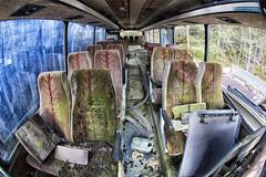 Businterior (Trond Sollihaug) Tags: bus businterior decay abandoned wreck moss mose laststop