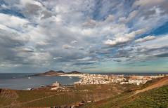 Las Palmas de Gran Canaria (Macreando) Tags: macreando lagrimon sonyalpha350 zenitar16mmf28