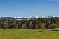 Blick in Bregenzerwald im Frühling #2 (PADDYSCHMITT.DE) Tags: bregenzerwald frühlingimwestallgäu alpensicht alpenpanorama frühling schneebedecktealpen blickindieberge