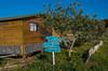 Bozcaada (Tony Morvant - Au bambou de mes rêves) Tags: bozcaada turquie friends camping
