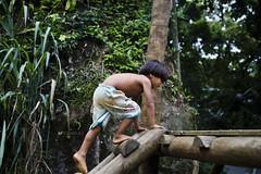 Aldeia Guarani_Foto de AF Rodrigues_14 (AF Rodrigues) Tags: afrodrigues aldeiaguarani guarani paraty rj riodejaneiro brasil bemquerer br programaproíndio uerj aldeiaindígina povodafloresta populaçãotradicional índio indígina