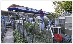 Bin Man Bagged (Jim the Joker) Tags: meridian class222 eastmidlandstrains kettering railway train midlandmainline mml 222013