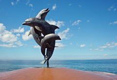 Sunny Puerto Vallarta (Kim's Pics :)) Tags: dolphins statue ocean views sunny bluesky malecon boardwalk vacation puertovallarta mexico fountain