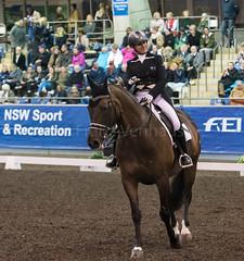 17429_Sydney_CDI_GPFS_0086.jpg (FranzVenhaus) Tags: athletes dressage australia equestrian riders horses ponies rug siec nsw sydney newsouthwales aus