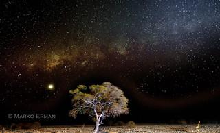 Milky way in Etosha