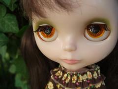 Orange eyechips