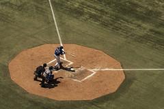 Jay's Game 3 (DavidIanJohnson) Tags: toronto sports sport baseball stadium bluejays athletes jays athlete rogerscentre