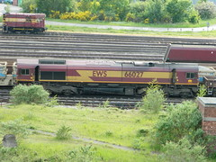 66027 Toton 08/06/2013 (37686) Tags: 5 66 class type tug 60 midlands ews toton railfreight dbschenker