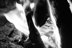 Feu (AYUMI-TURQUOISE) Tags: white black fire turquoise flame federica bianco nero fuoco ayumi feu pagano fiamme