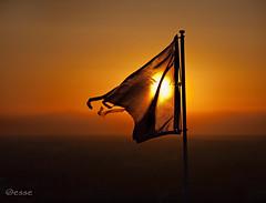 ... till dawn. (_esse_) Tags: orange sun fire dawn alba flag air elements sole arancio ether bandiera fromdusktilldawn traguardo canoneos5dmarkii trasguardo potd:country=it
