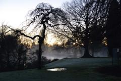 Mona Vale 20130625 (4) (KiwiMunted) Tags: christchurch sunrise landscape canterbury nz monavale 2013 kiwimunted