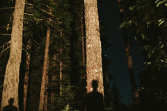 Shadows (Casey Broadwater Photography) Tags: trees light pine night forest dark fire star woods shadows plato