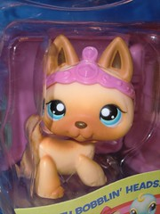 Petshop 212 (MissLilieDolly) Tags: petshop pets pet animaux figurine figurines chat cat dog chien bird oiseau tigre tiger ours bear panda cheval horse hasbro collection 212 missliliedolly miss lilie dolly aurelmistinguette