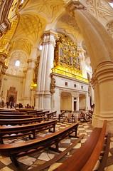 Grenade - Granada 39 l'orgue de la Cathdrale (paspog) Tags: spain cathedral catedral andalucia cathdrale granada andalusia grenade espagne spanien andalousie katedrale hauptkirche