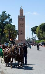 Koutoubia Mosque (Patrick Costello) Tags: horse square carriage minaret morocco marrakech medina marrakesh jamaaelfna jemaaelfnaa koutoubiamosque