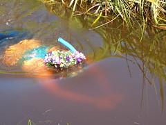Bog Snorkelling 2013 (Thomas Kelly 48) Tags: wales lumix panasonic snorkelling extremesports bog bogsnorkelling fz150 llanwyrtyd llanwyrtydwells