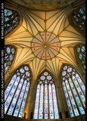 CATEDRAL DE YORK (Miguel Calleja) Tags: york cathedral yorkshire catedral cathdrale minster chapterhouse salacapitular