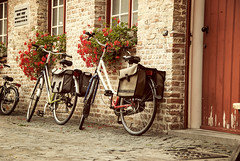 School Yard (Cat Girl 007) Tags: vintage europe belgium bricks bikes cobblestones bicycles bruges oldfashioned schoolyard